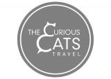 logo_curious